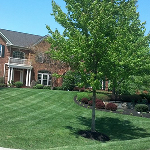 Prince Georges Residential Landscaping