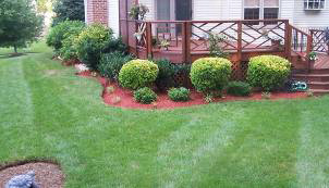 iPG Landscape Company